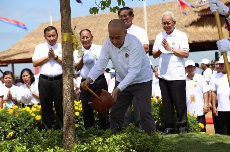 """King Norodom Sihanouk, King Father Norodom Sihamoni, the King of Cambodia, President of the highest honor Join at the """"Plant trees"""" festival"""