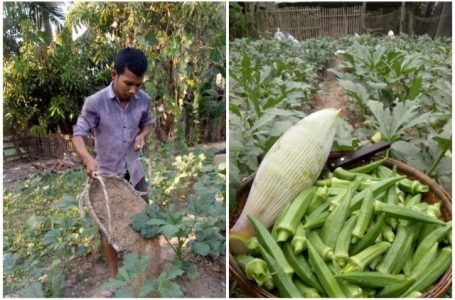 From a farmer to a farmer, he converts his produce to the neighbors for $ 500 a month